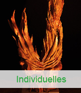 Individuelles